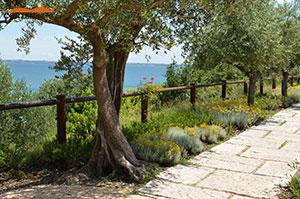 Cortensafe-staccionata-Brunico-1-corretto-acciaio-corten-protezione-camminamento-lungo-lago-bellezza-eleganza