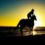 maneggi e cavalli